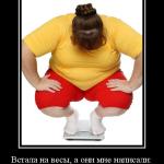 Забавное о диете