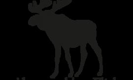 Abercrombie & Fitch откажется от своего логотипа