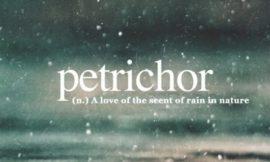 Аромат после дождя имеет свое название