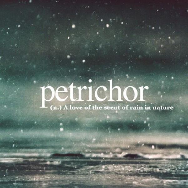 Аромат после дождя имеет свое название - petrichor