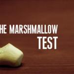 Как развить способность к самоконтролю: маршмеллоу-тест
