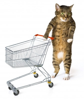 котик шопинг