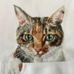 Котики спасают от дресс-кода