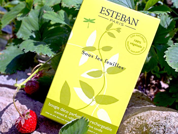 Esteban – аромасвеча В тени зеленых деревьев. Отзыв