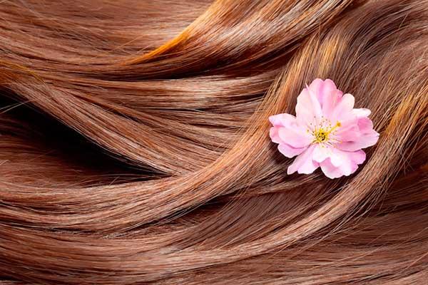 Насколько здоровы ваши волосы: простой тест