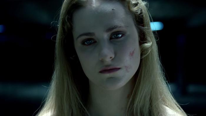 westworld_tease-bb4c3104550-original