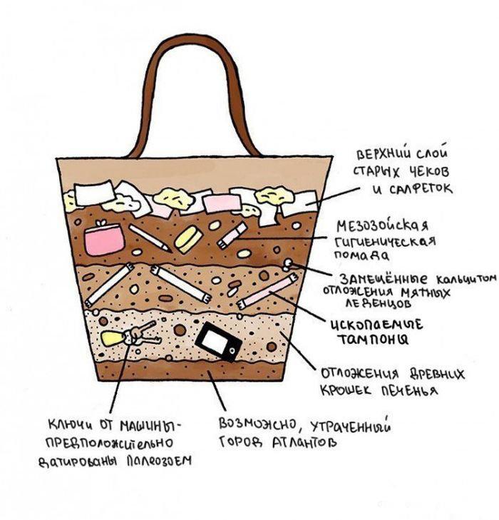 Что лежит в женских сумочках