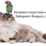 Кодовые секретные слова сайта Лабиринт ФЕВРАЛЬ 2017