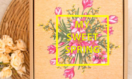 We Green Box – My Sweet Spring: Green Box Mix. Отзыв