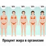Жир на животе: чем питаться, чтобы от него избавиться