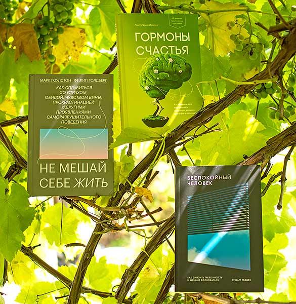 Три книги о счастье, спокойствии и осознанности. Отзыв